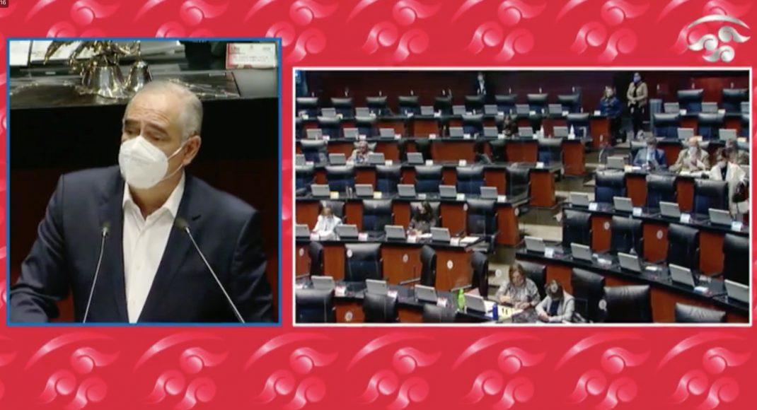 Senador Julen Rementería, en la discusión de un dictamen sobre el informe de la Guardia Nacional