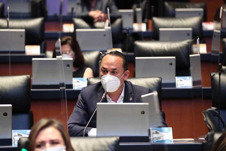 Pide PAN comparecencia de Sanjuana Martínez ante el Senado , Erandi Bermúdez Méndez