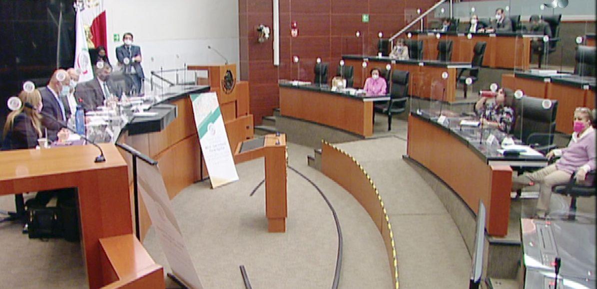 Intervención de la senadora Alejandra Reynoso Sánchez, en la comparecencia de Juan Antonio Ferrer Aguilar, director general del Insabi, ante la Comisión de Salud.