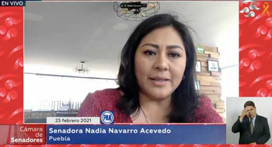 Senadora Nadia Navarro Acevedo al intervenir en la sesión ordinaria.
