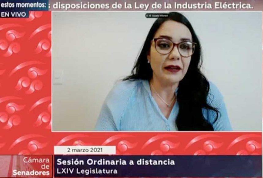 Intervención de la senadora Audelia Villarreal Zavala, al participar en la discusión de un dictamen de las comisiones unidas de Energía, de Medio Ambiente, Recursos Naturales y Cambio Climático, y de Estudios Legislativos Segunda, que reforma diversas disposiciones de la Ley de la Industria Eléctrica.