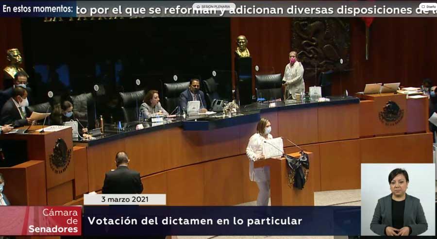 Senadora Xóchitl Gálvez Ruiz muestra pancarta en el Pleno