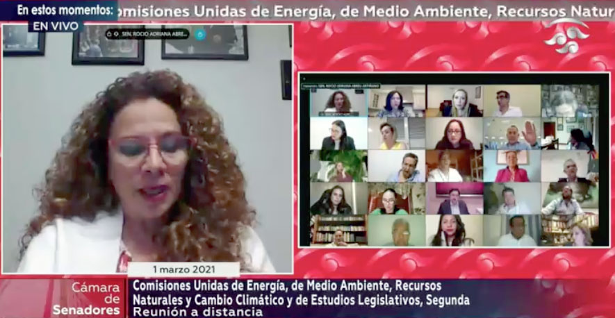 Intervención del senador Julen Rementería del Puerto, para referirse al orden del día durante la reunión de trabajo de la Comisión de trabajo de la Comisión de Energía.