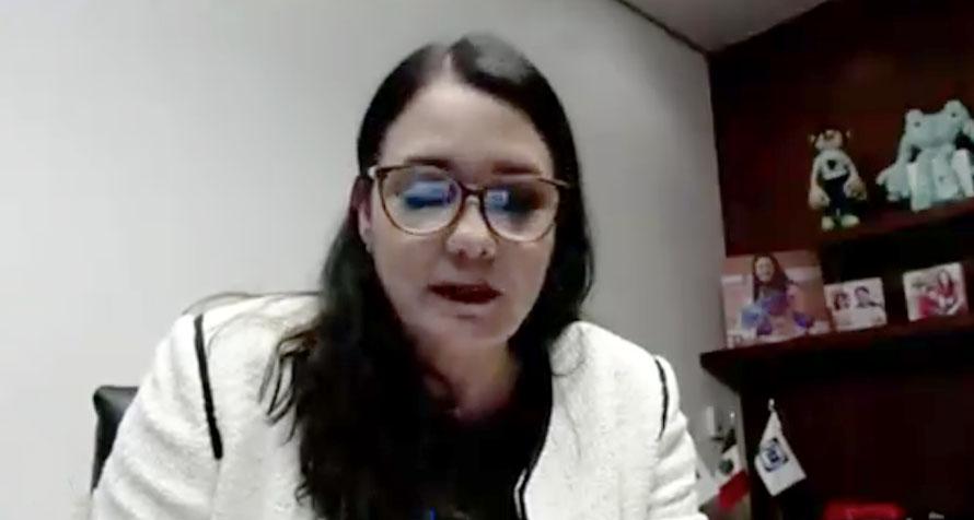 Senadora Audelia Villarreal Zavala, en la discusión de un dictamen que reforma la Ley General de Asentamientos Humanos, Ordenamiento Territorial y Desarrollo Urbano