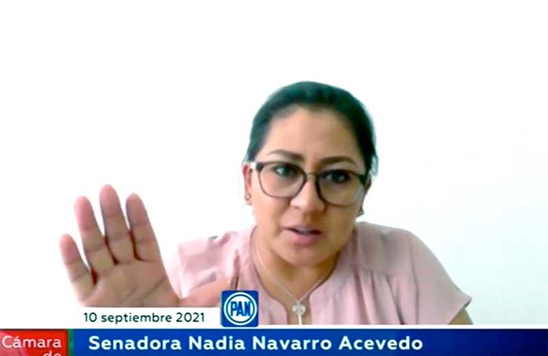 Intervención de la senadora Nadia Navarro Acevedo, en la reunión de las comisiones unidas de Igualdad de Género y de Estudios Legislativos Segunda, para referirse al dictamen de las minutas en materia de Alerta de Violencia de Género contra las mujeres.